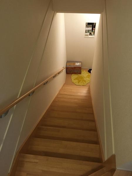 階段の下に放置された12リットルの箱